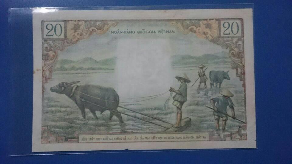 Tờ tiền bụi chuối 1956