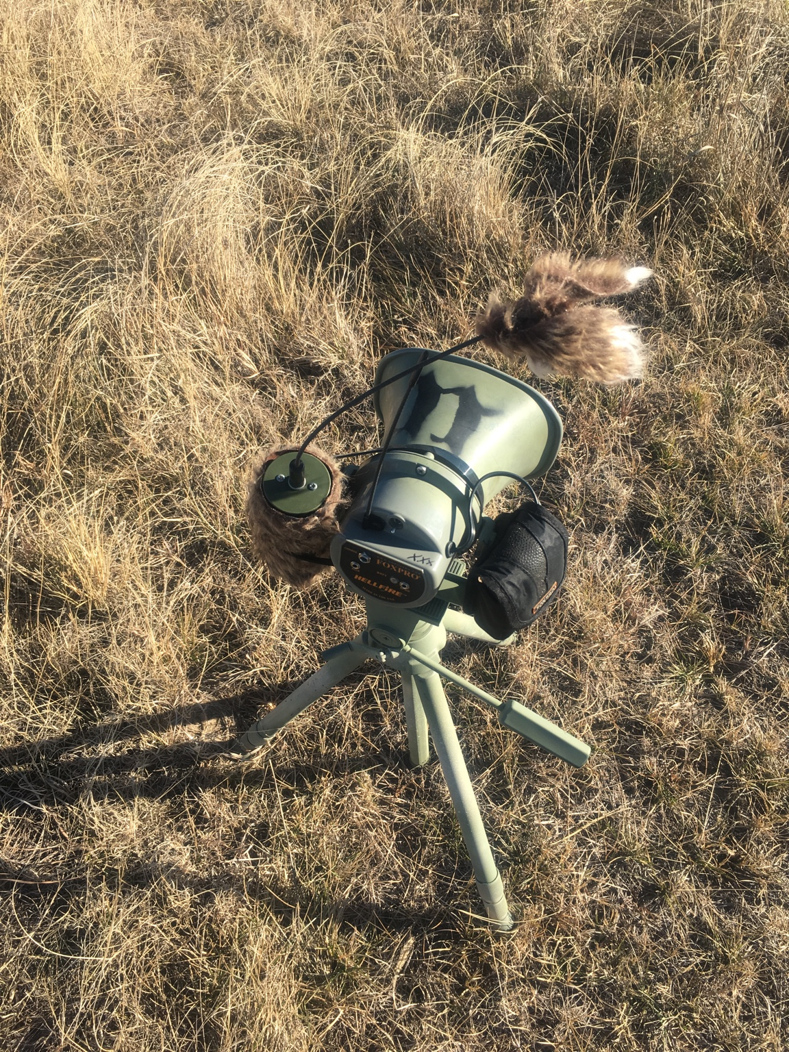 Call stand - FOXPRO Forums