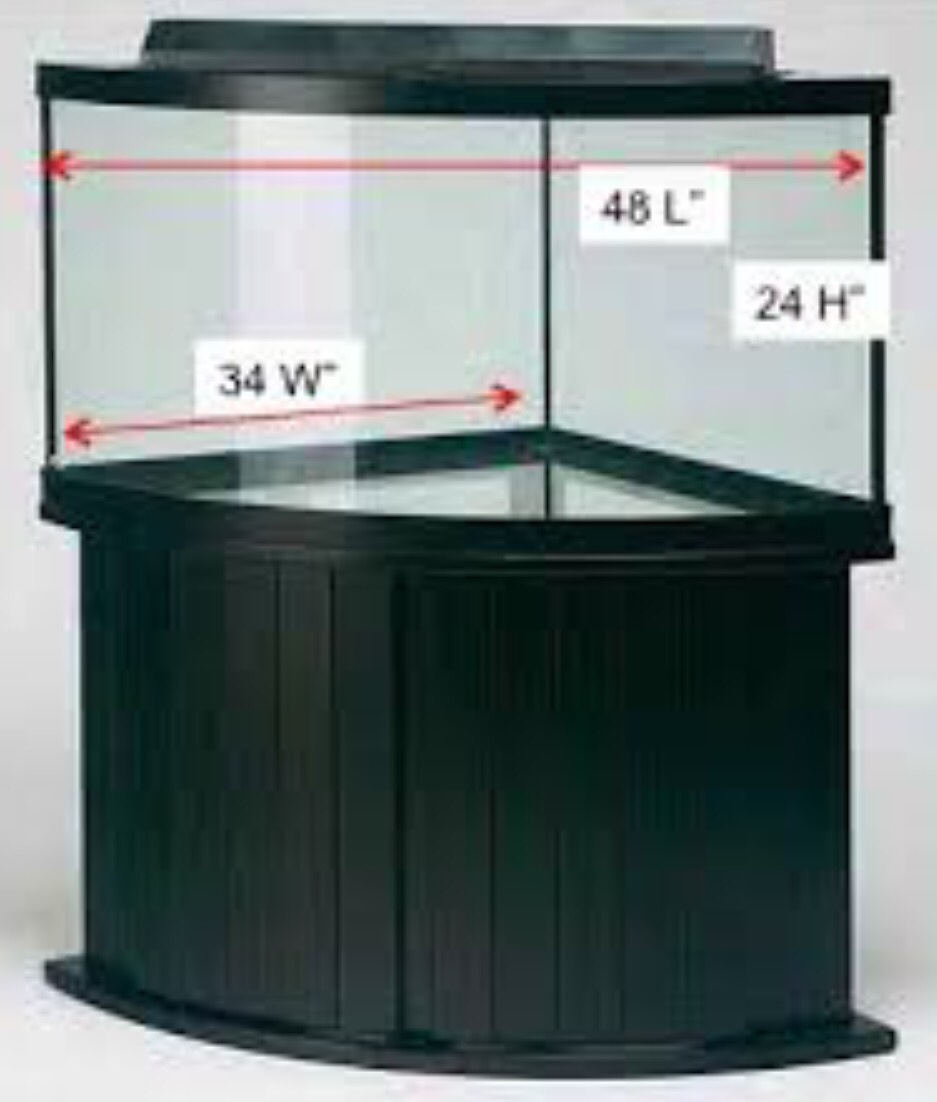 Brainstorming for 92 gallon corner tank 259319 for 38 gallon fish tank