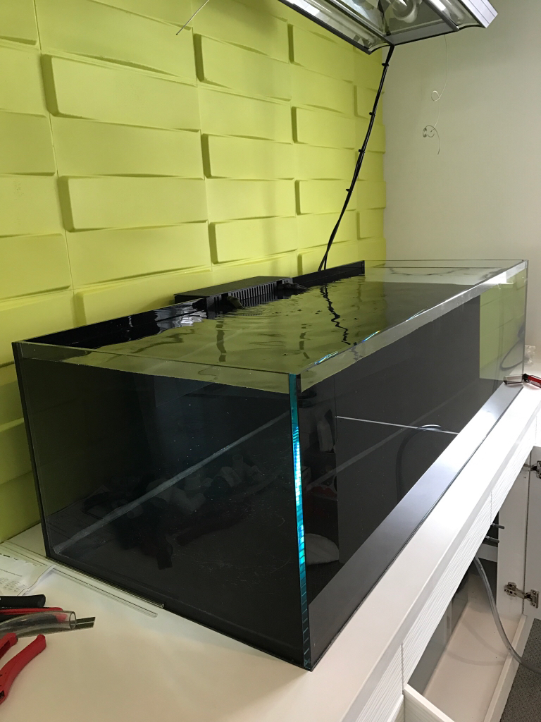 Rimless Tank Bowing - Reef Central Online Community