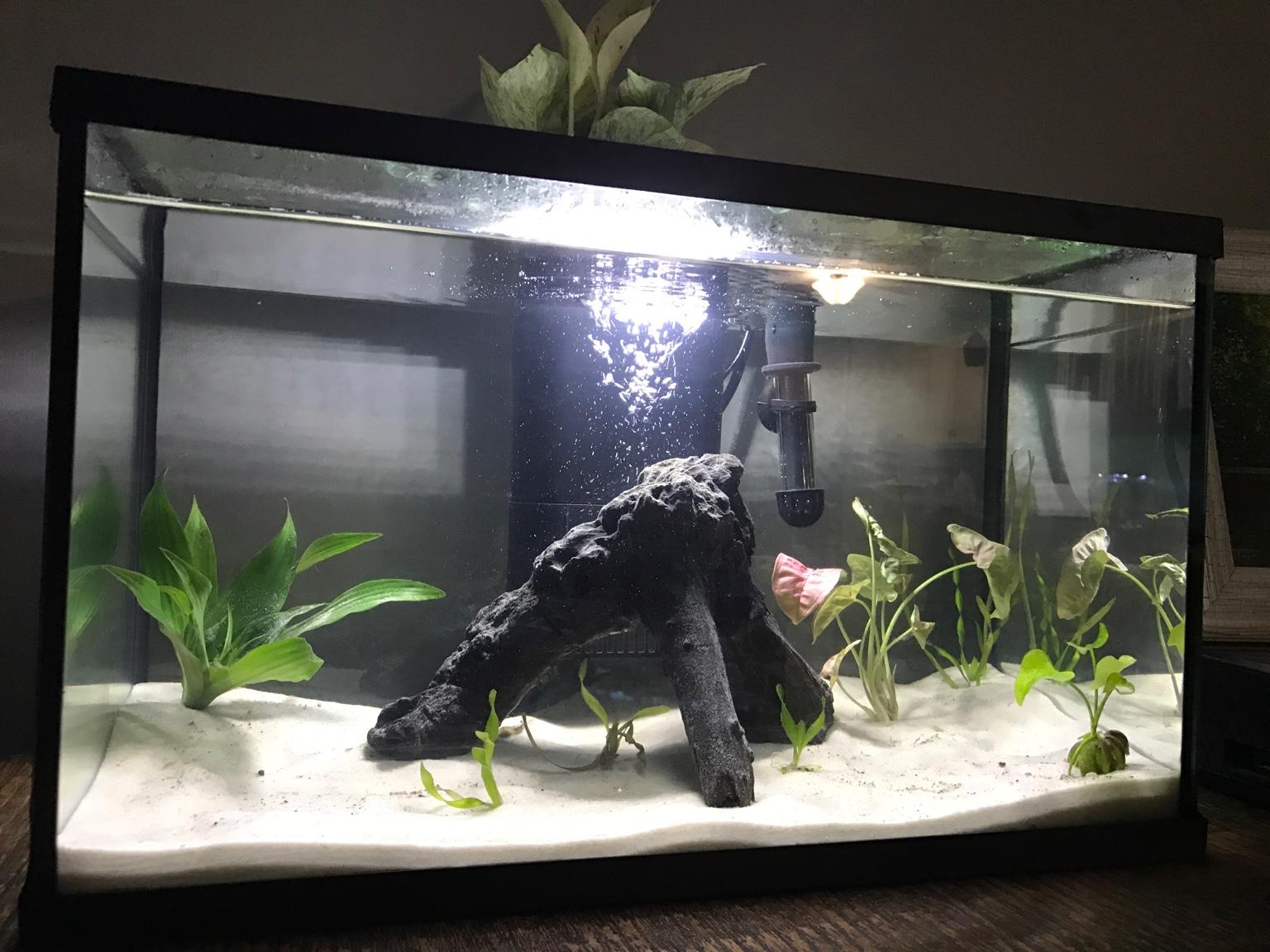Fish tank volume calculator inches - Fish Tank Volume Calculator Inches