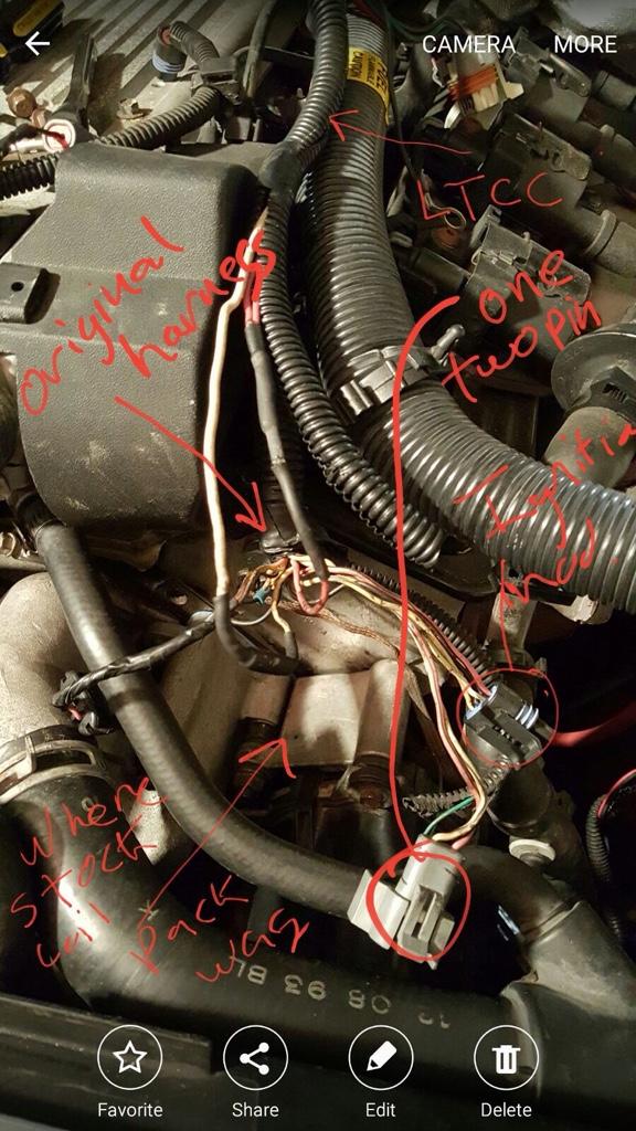 Torqhead 24X Link Wiring