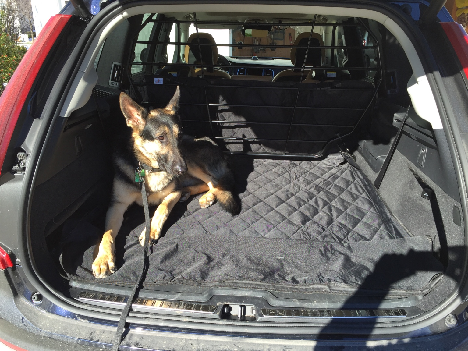 Quilted Car Dog Pet Seat Covers Full Set For VOLVO XC60 AWD