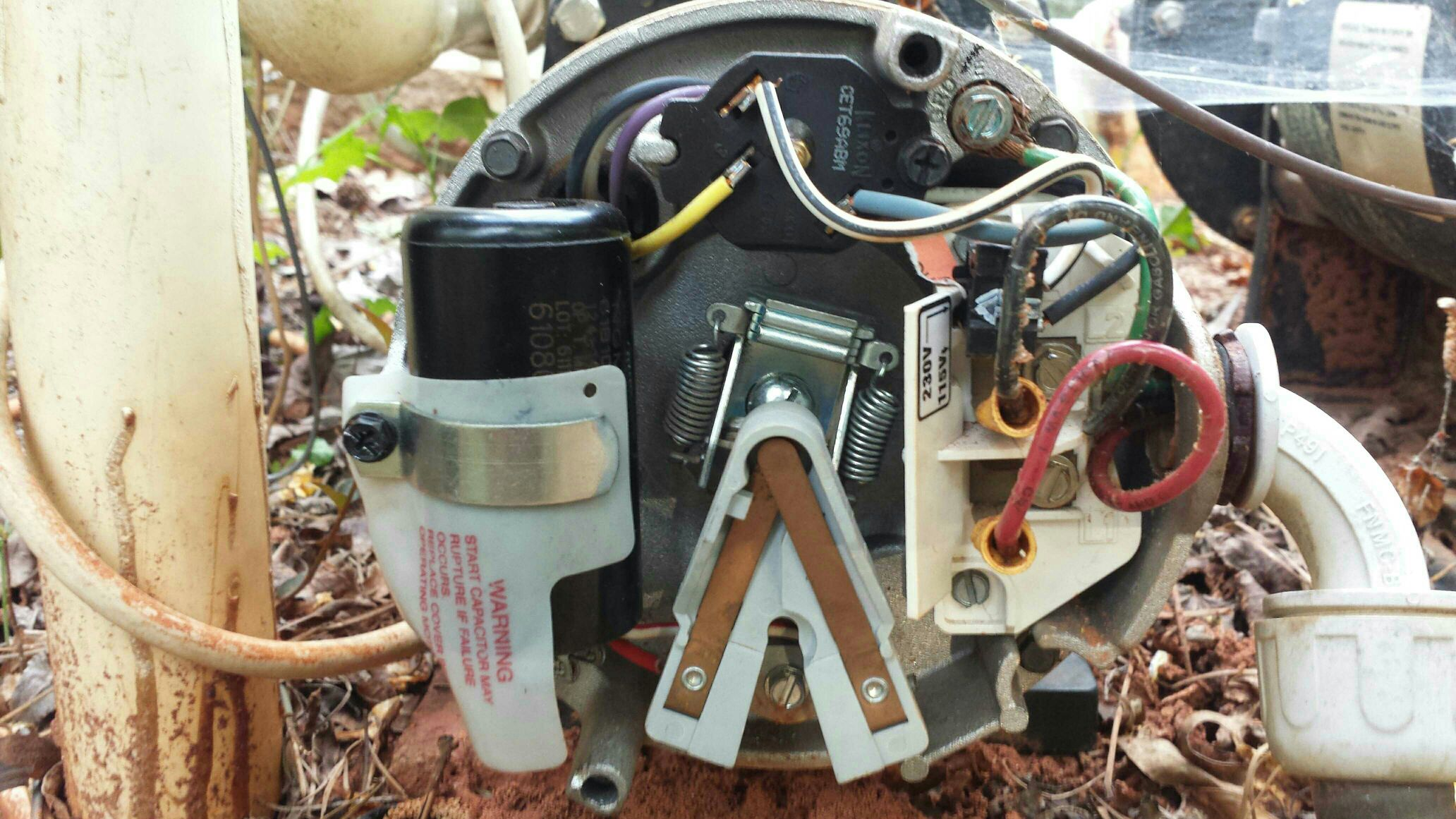 hayward pool pump wiring diagram solidfonts diagram century motors used in ultra jet wiring for pool pump solidfonts