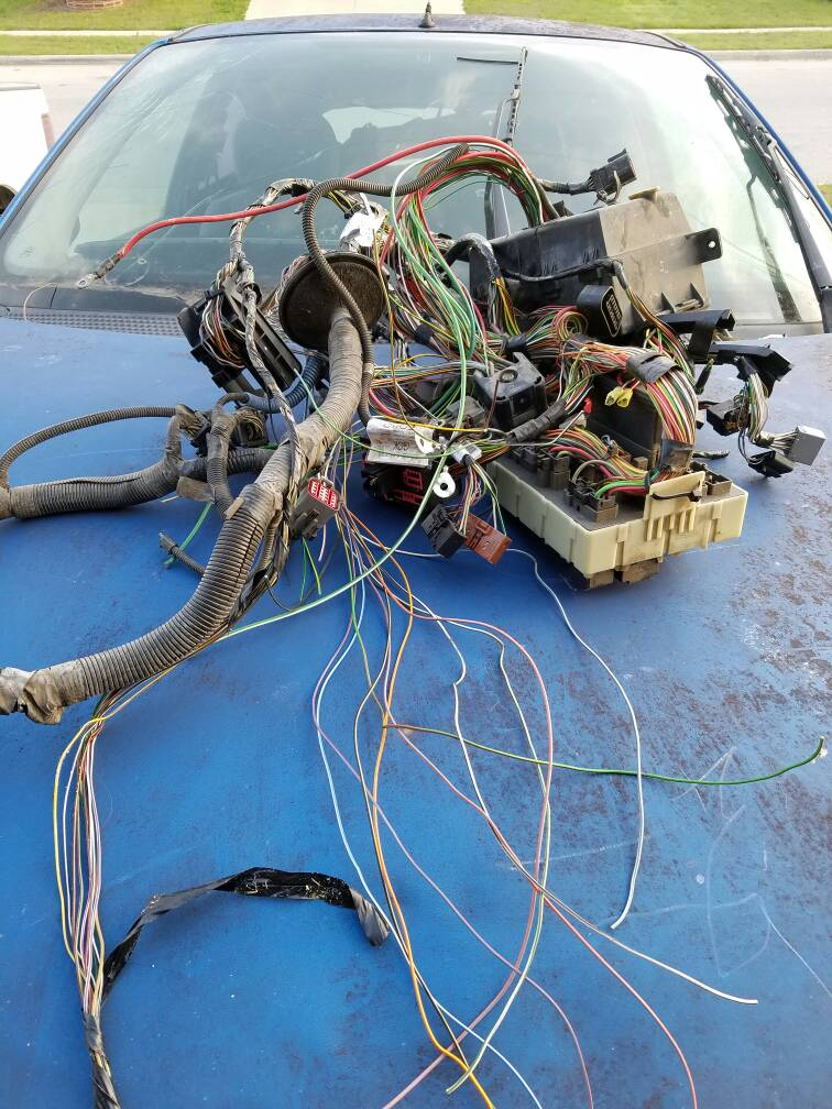Custom Wiring harness - Ford Focus Forum, Ford Focus ST Forum, Ford ...