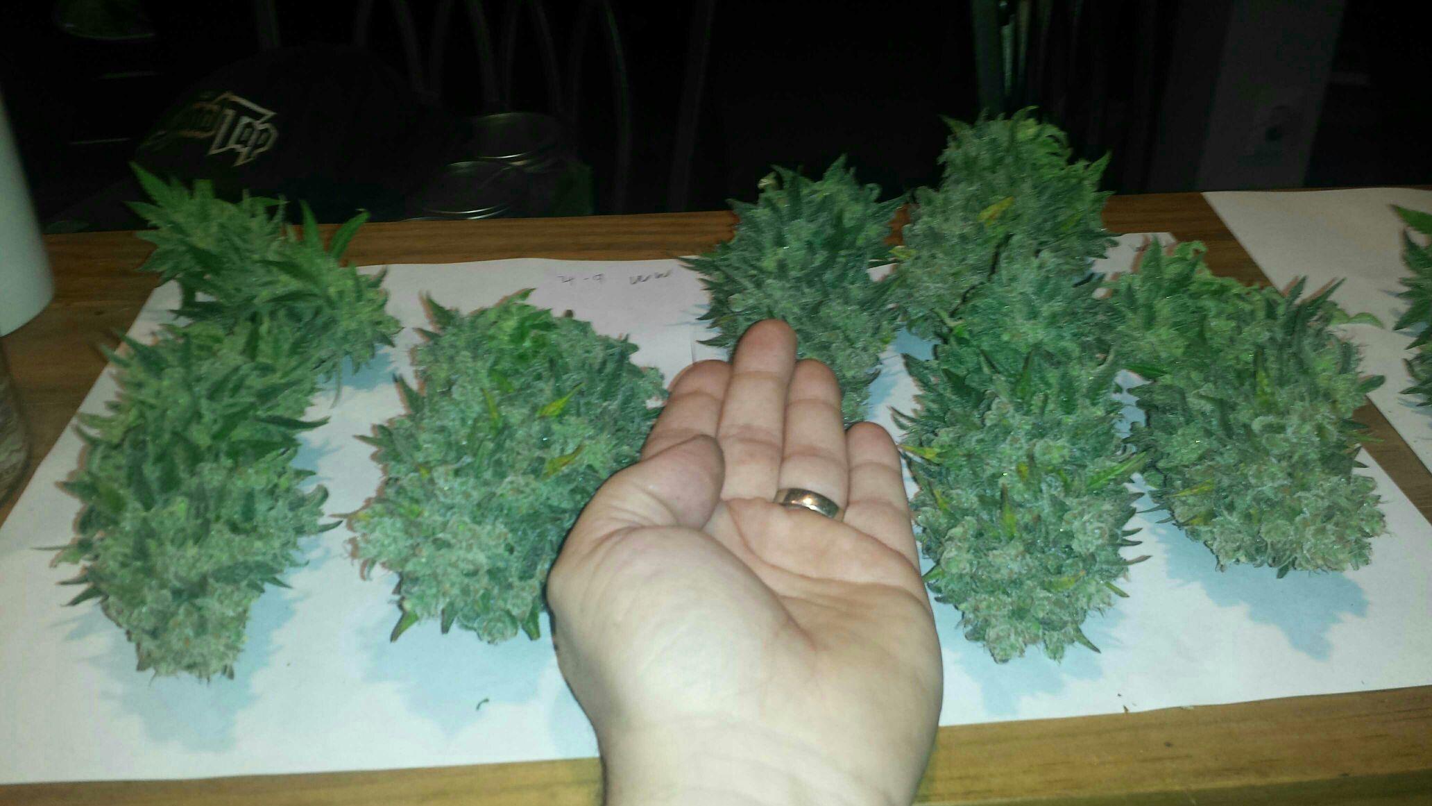 Round one. Thereu0027s about 2x this much on one plant that needs another 5 days. Bottom line is you can do it. By the end of the week Iu0027ll have just under a ... & 600 HPS in 2x2x5u0027 grow tent | Grasscity Forums