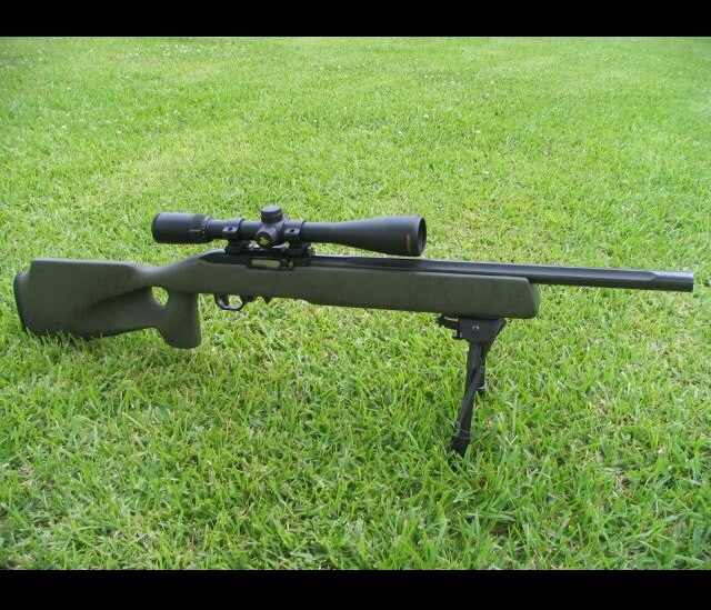 Lets see some really cool Ruger 10/22 builds! (Pictures