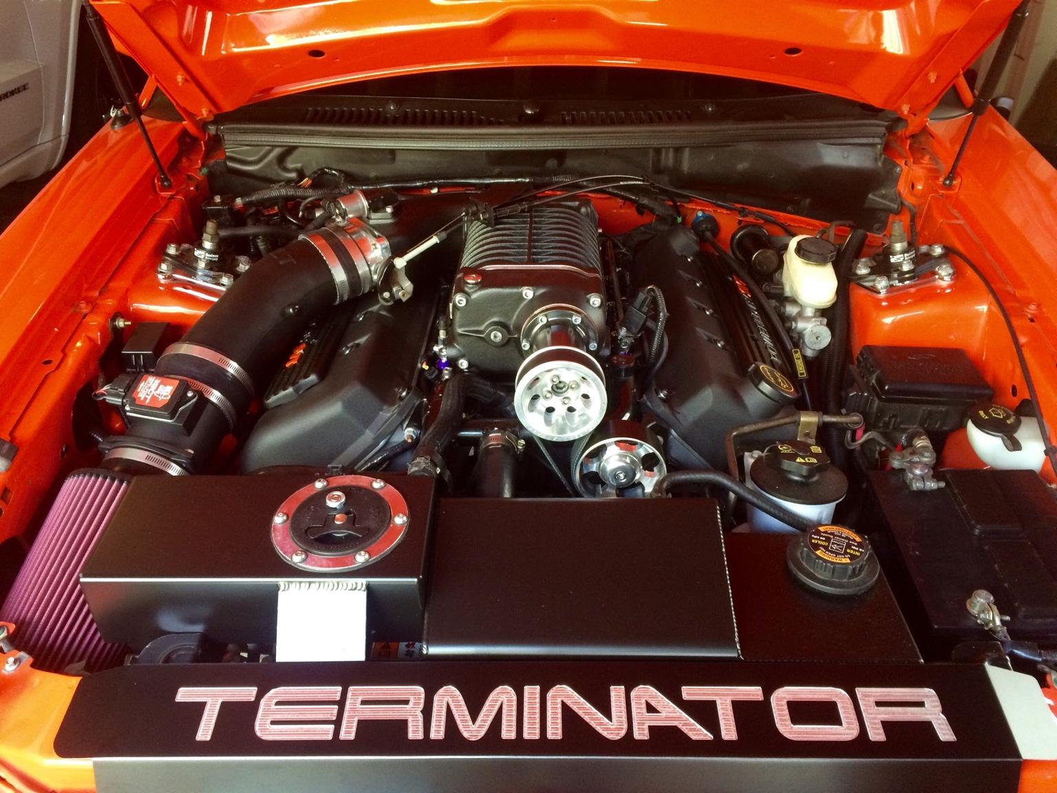 Terminator Cobra Engine Bay