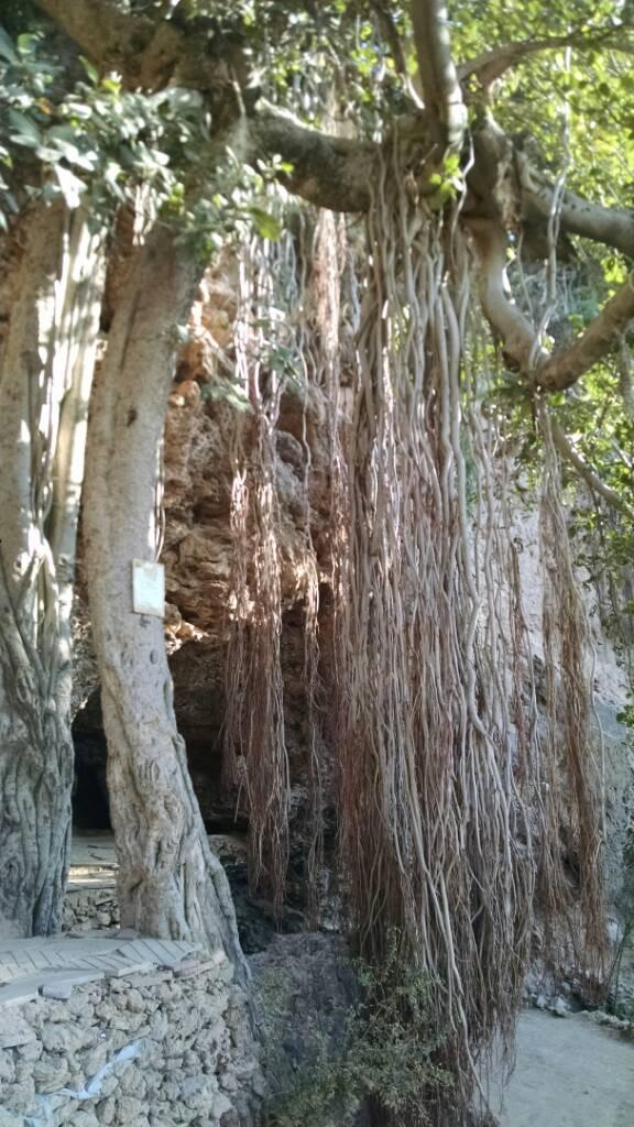 Secrets of Margala hills islamabad - 7bfa4483a7044f3c6e1b9e3f94ccc188