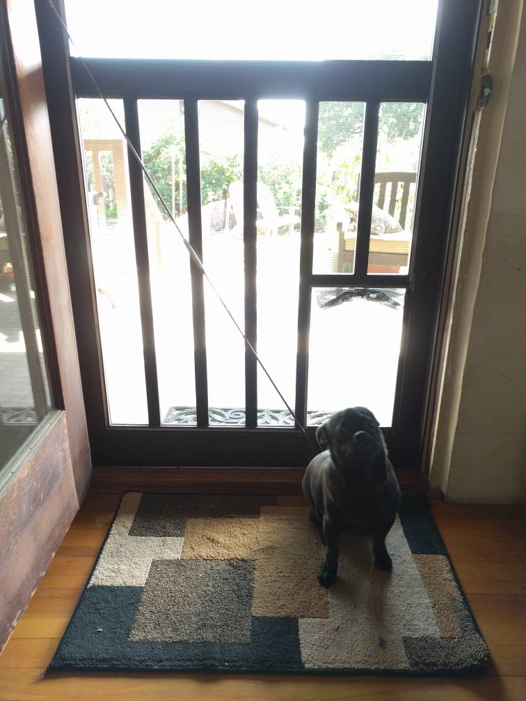 Last weekend I was working on the screen door adding a doggy door for our precocious pup when I realized the turnbuckle style door support might work. & Cheapskate LP tank j-hook mounts | Vintage Trailer Talk