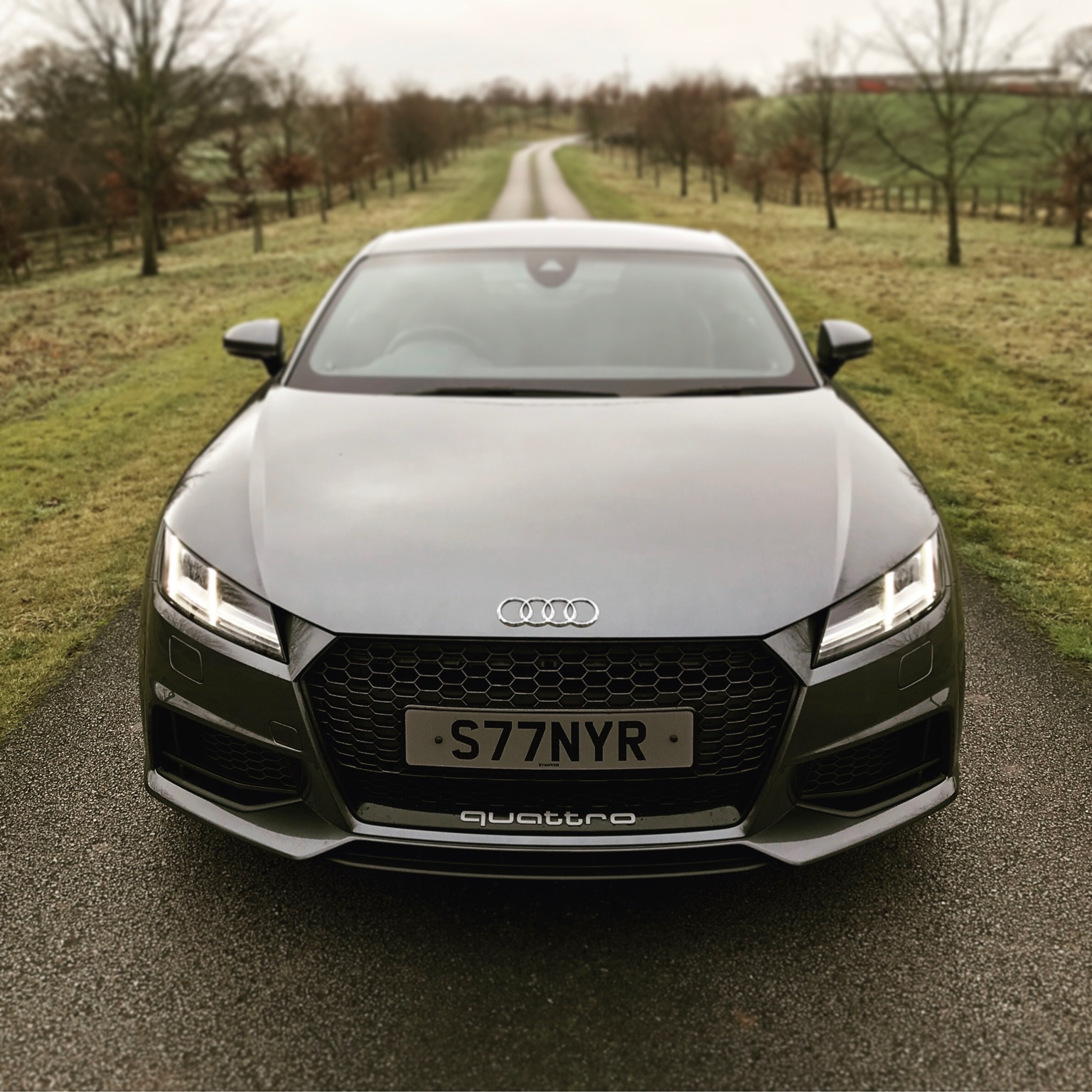 Tt rs grill black or silver