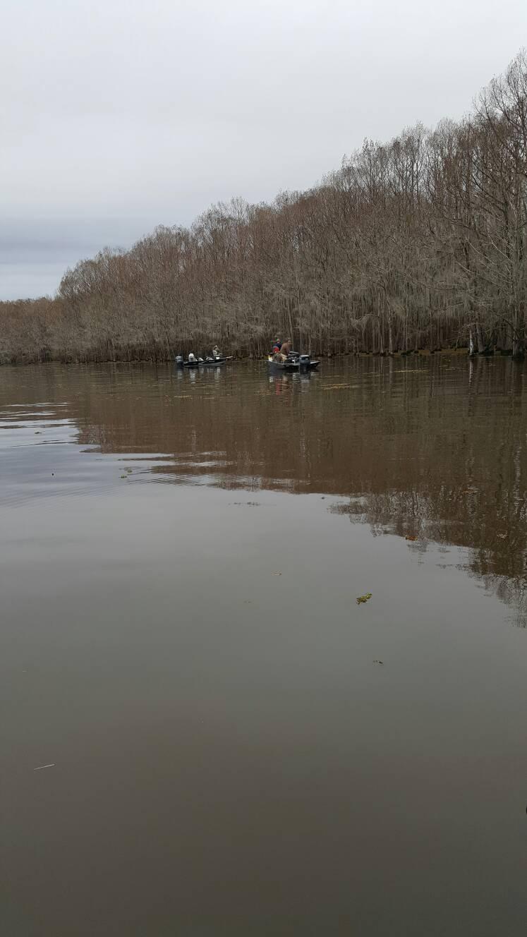 Lake bistineau 2 4 2017 for Lake d arbonne fishing report