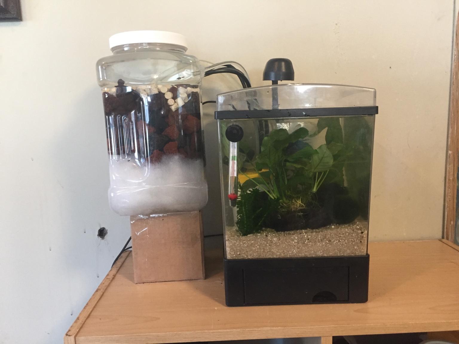 Diy Mini Aquarium Canister Filter Diy Campbellandkellarteam