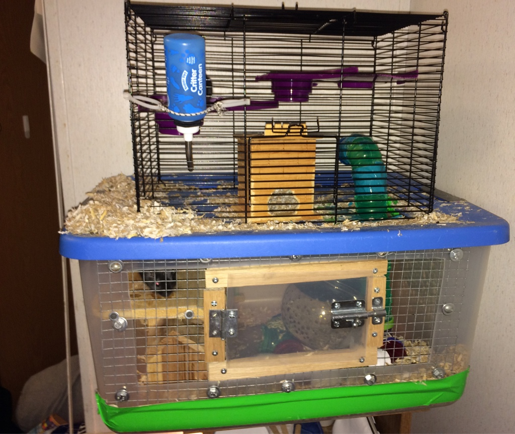 Top part is a gerbil/hamster cage from walamart (20-30bucks maybe less) Bottom part is a plastic storage bin. Wire is wire mesh (I had some in my garage) & Gerbil Or Guinea Pig? | Page 3 | Fish Lore Aquarium Fish Forum | 268275