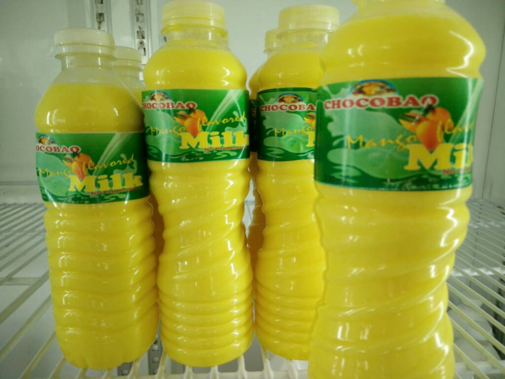1575c02612da8fca64e9d940a8c8282d - Carabao milk from Ubay, Bohol - Photos Unlimited