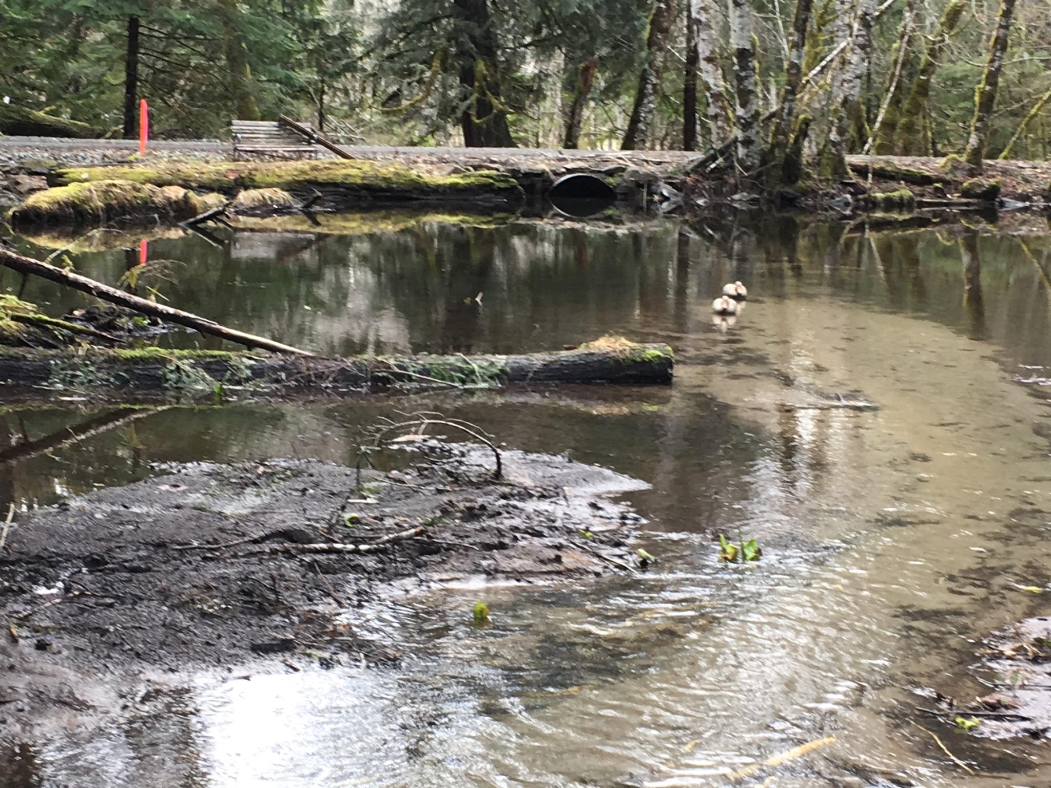 DIY pond dredging - Pirate4x4 Com : 4x4 and Off-Road Forum