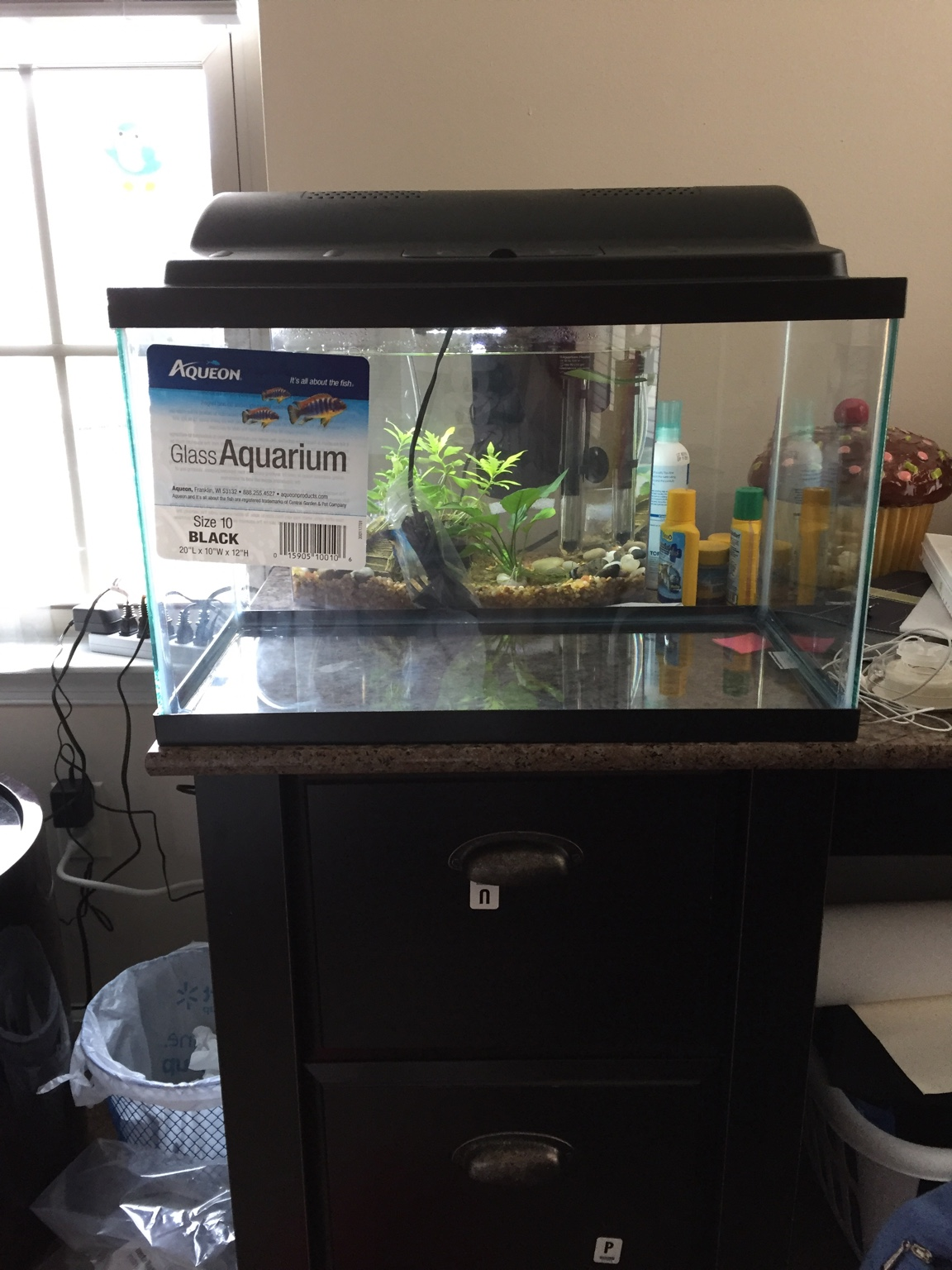 Can a desk withstand the weight of a 10 gallon tank 274177 for 10 gallon fish tank for sale