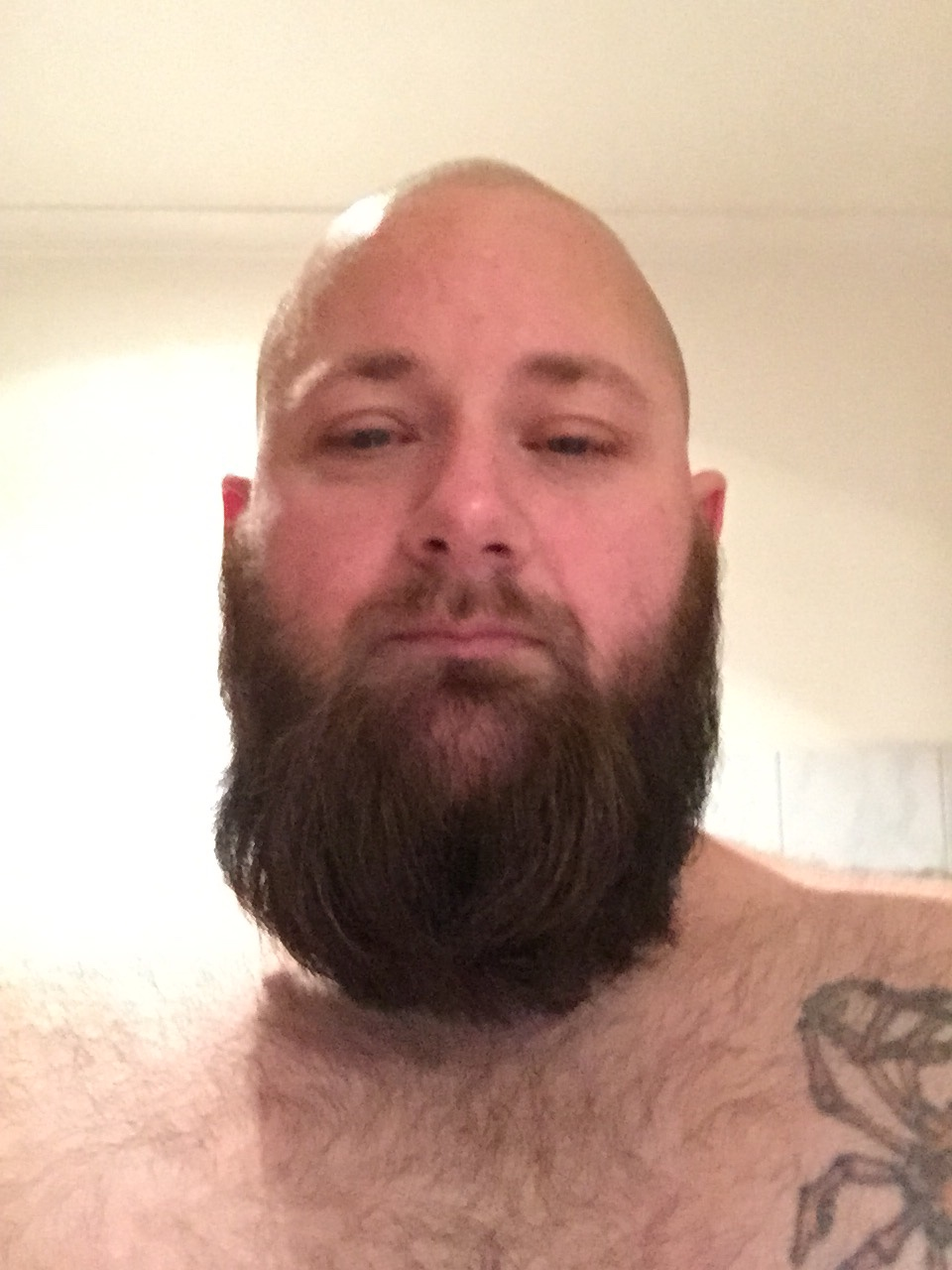 Summer Beard