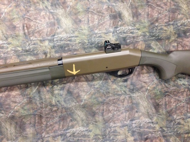 Stoeger 3020 and TSS