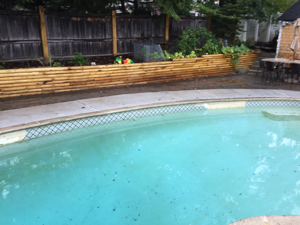 Old Gunite Pool : Getting quotes for old s gunite pool reno
