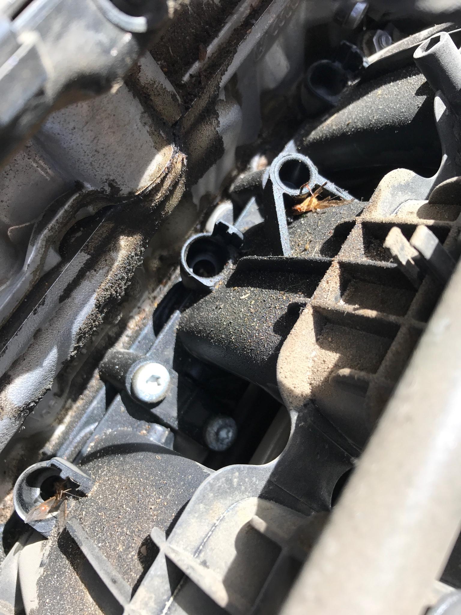 Engine Valve Cover Grommet For Audi 4000 VW Beetle Cabrio Cabriolet Jetta Passat
