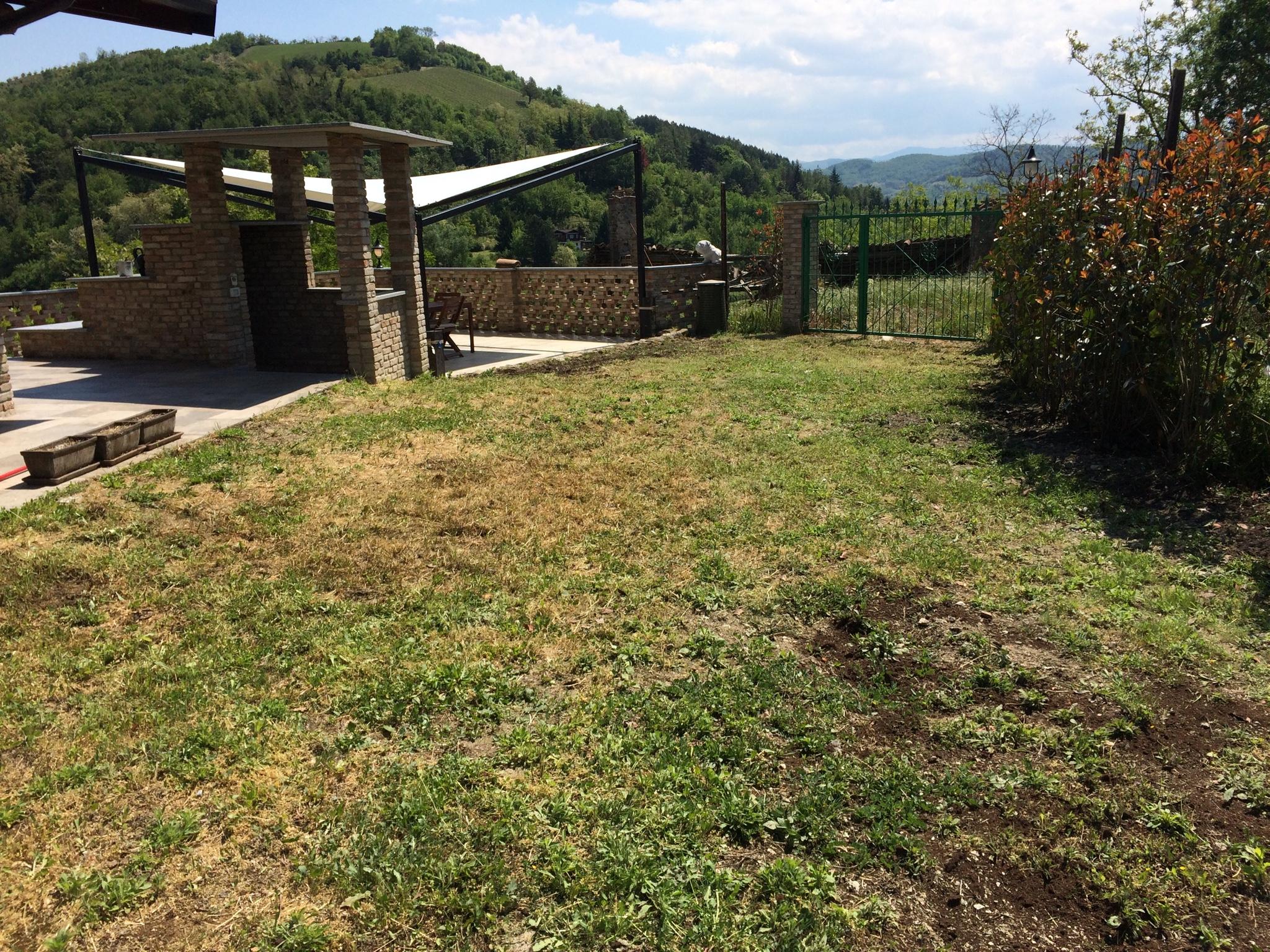 Giardino da completare forum di for Trasforma un semplice terreno in un colorato giardino