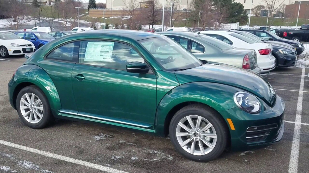Could Be Bottle Green That Is Curly On Beetles Would Pretty Sweet I M A Fan It