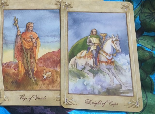 Page of wands & Knight of cups combination  - Aeclectic