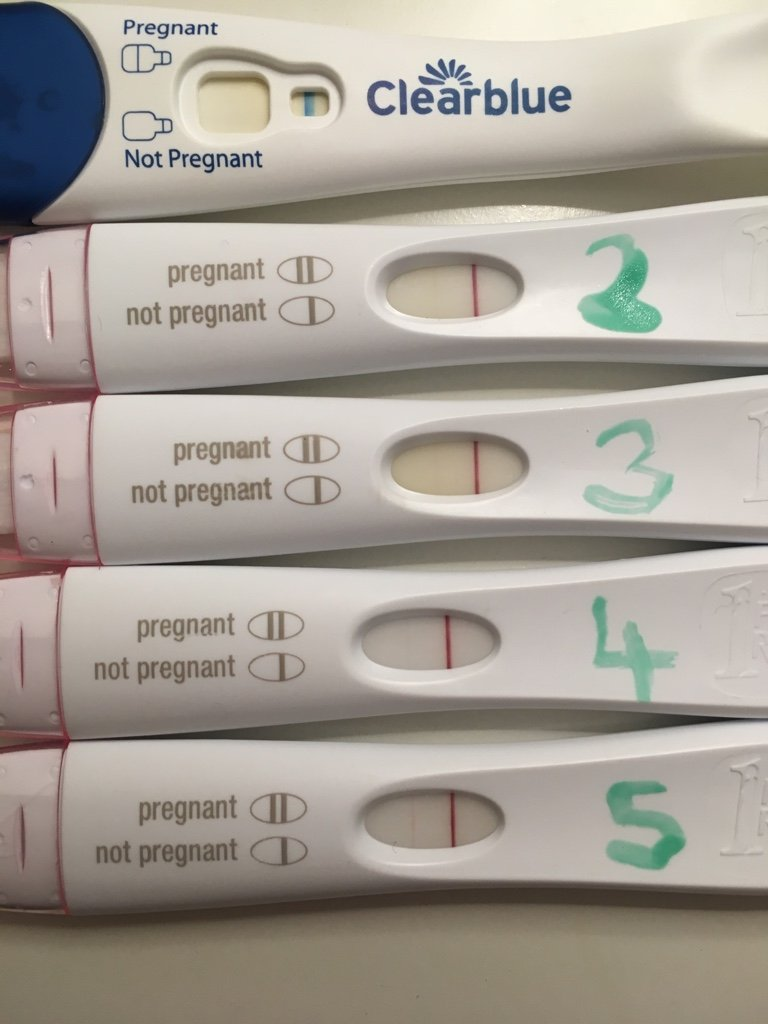 Clearblue Early Pregnancy Test Hcg Level - Pregnancy Test Work