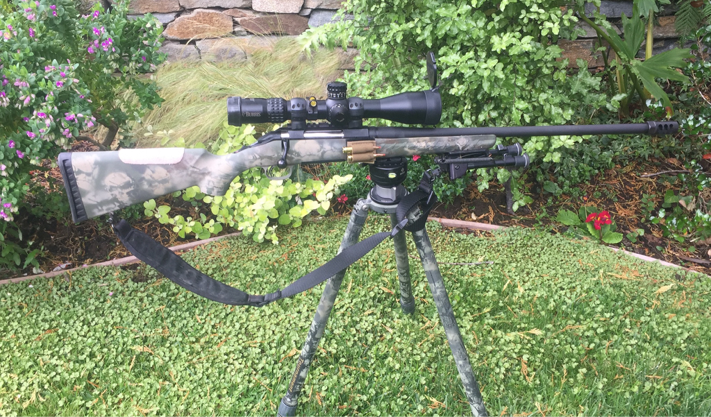 Budget truck build - Ruger American Predator 6 5 all in