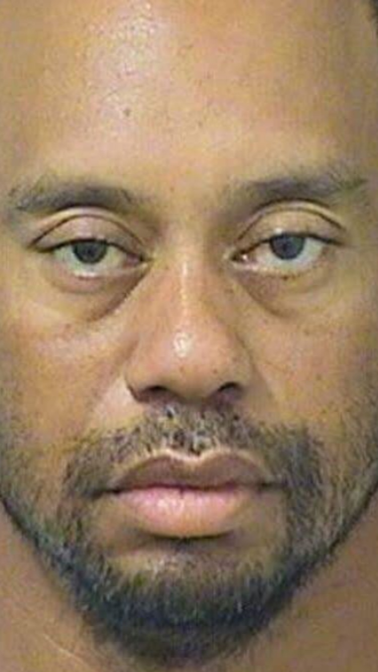 how big is tiger woods cock very big dick shemale