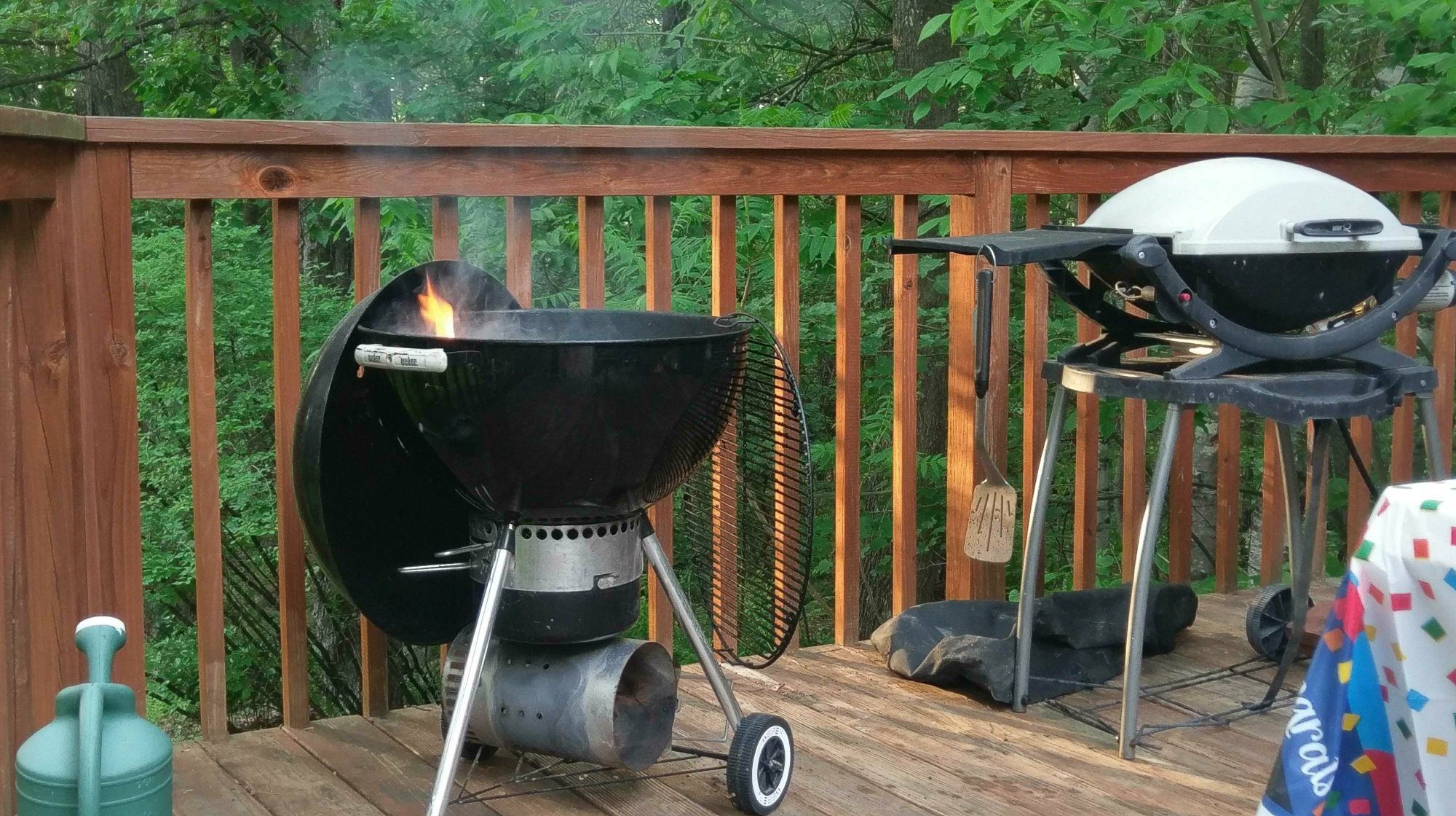 Outdoor Cooking smoking grilling barbecuing open spit etc