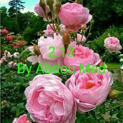 [Image: d0f22b18f6a19eec0adbd1aa83fab4ec.jpg]