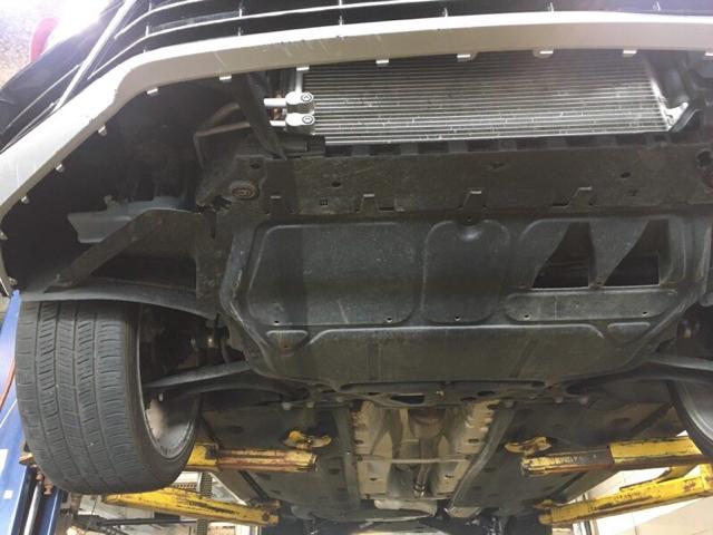 VWVortex com - Front suspension squeak???