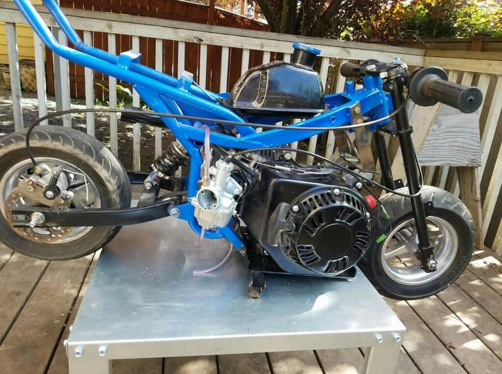 Predator on a cag? - Pocket Bike Forum - Mini Bikes