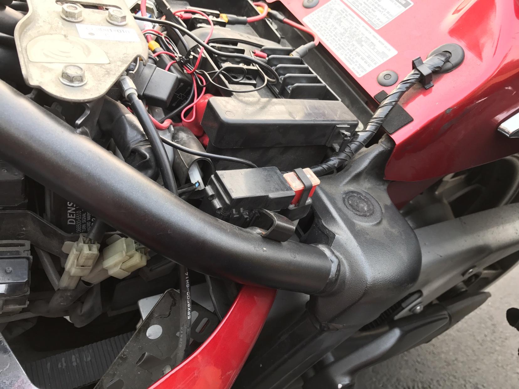 Brake Light Wiring Harness