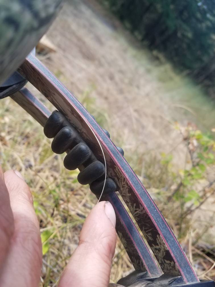 Hoyt Carbon Element limbs splintering? | Rokslide Forum