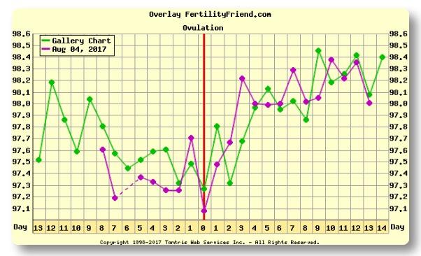 Analyzing charts 8/27 | GBCN