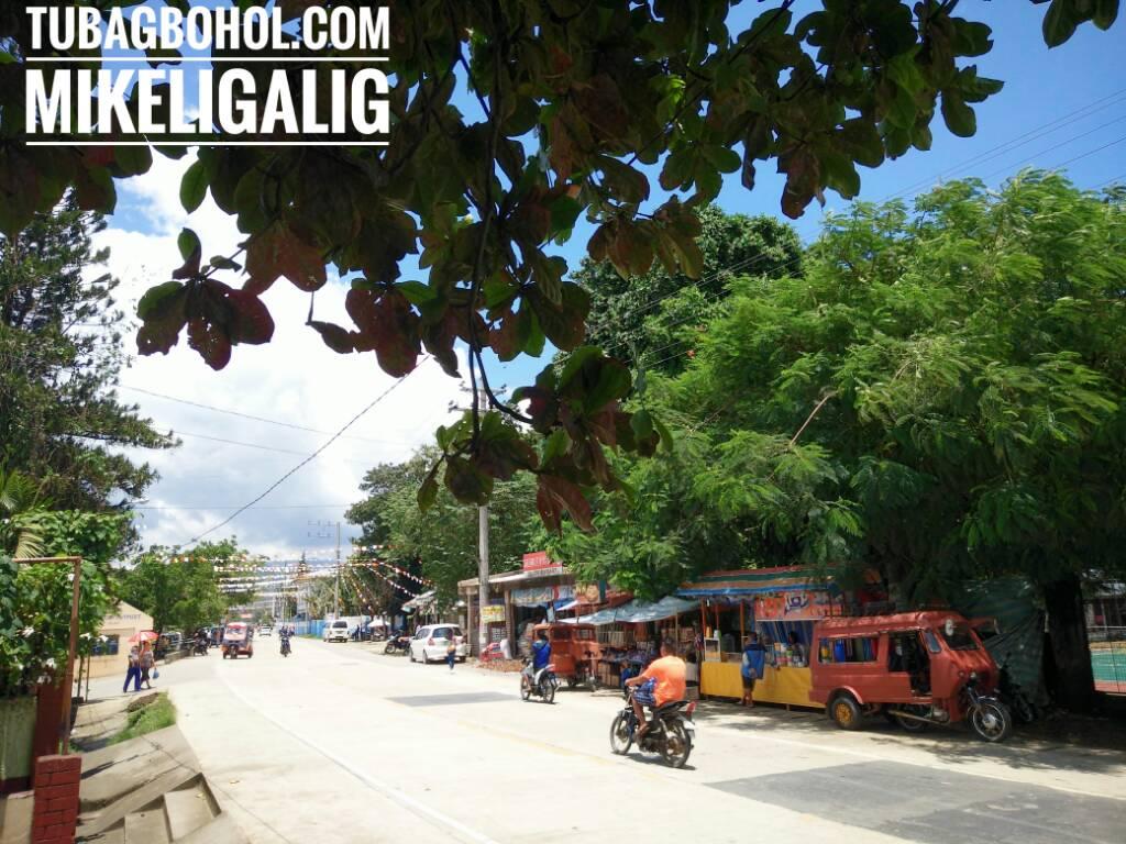 776f86e1f0d006bf692e791c81f91f53 - In Guindulman town, Bohol, Philippines - Philippine Photo Gallery