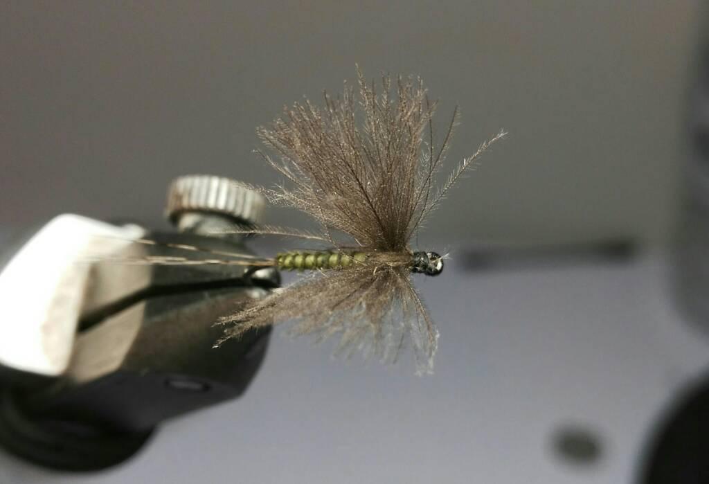 SBS split wing jednodnevka 2850ef215d29582816a3624cfb6a1189