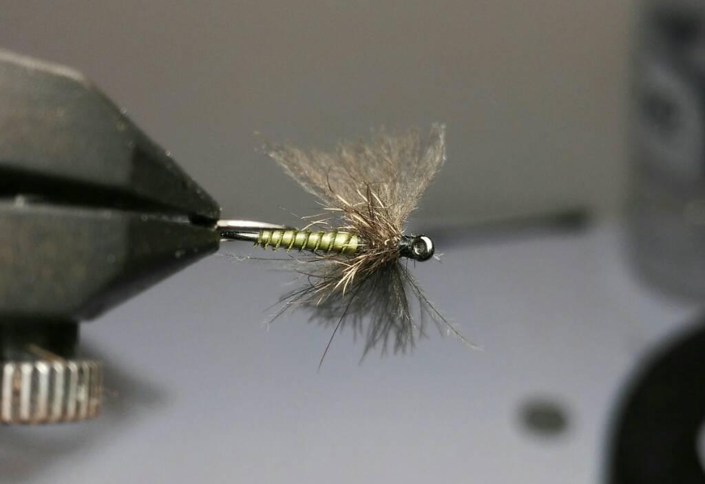 SBS split wing jednodnevka 2fe10bf41cfc6bfa851771c386b0e568