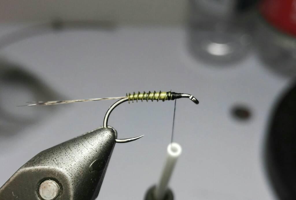 SBS split wing jednodnevka 3449b57799f926cc6ca1212bdf416c7a