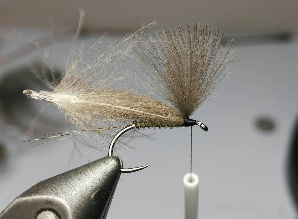 SBS split wing jednodnevka B544f3015eaa73a173858bd9de874822