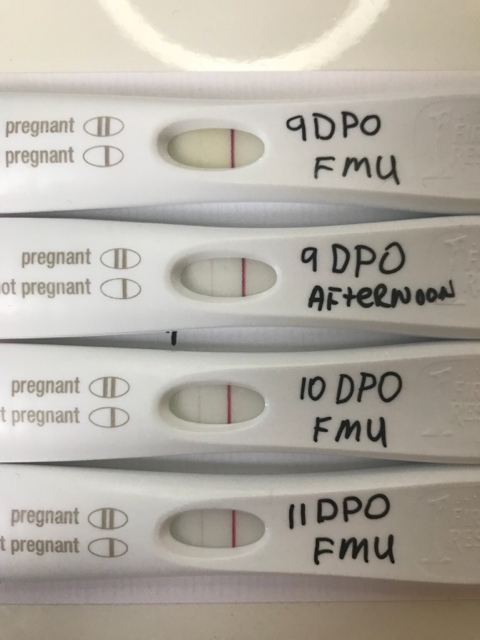 Lines On Pregnancy Test Not Getting Darker - Pregnancy Symptoms