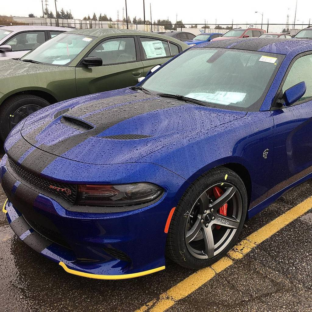"Is there any actual pictures of ""Indigo Blue"" yet? 