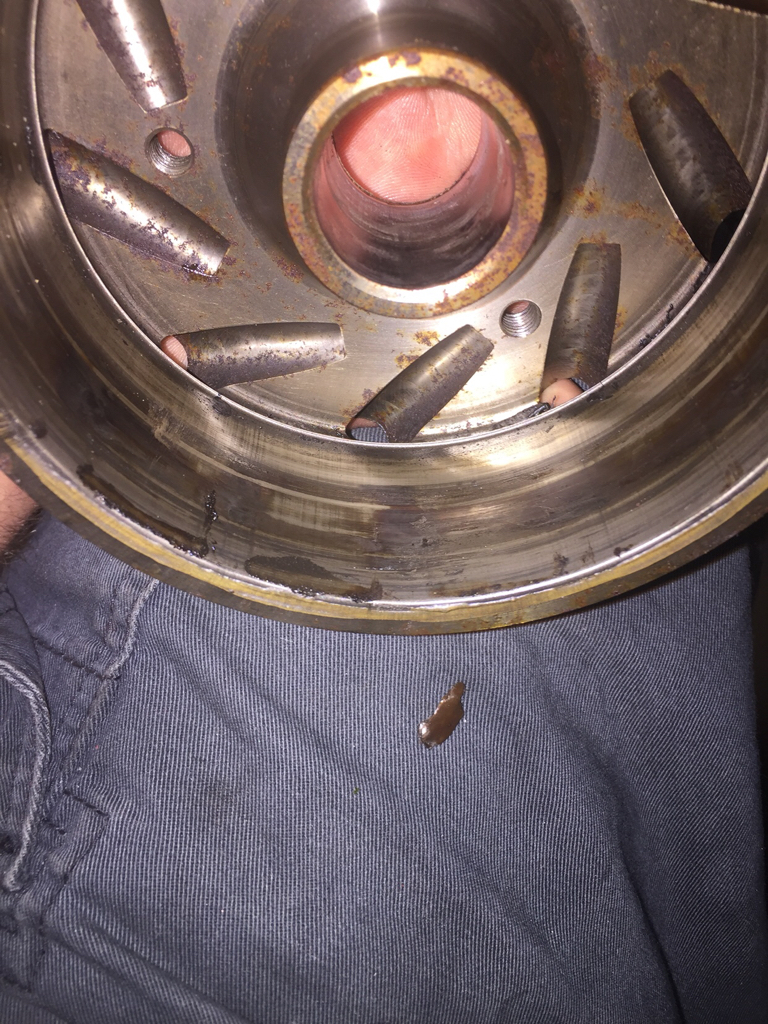 Help? Lol  Lots of grease behind stator - REV-XP / XS Chassis