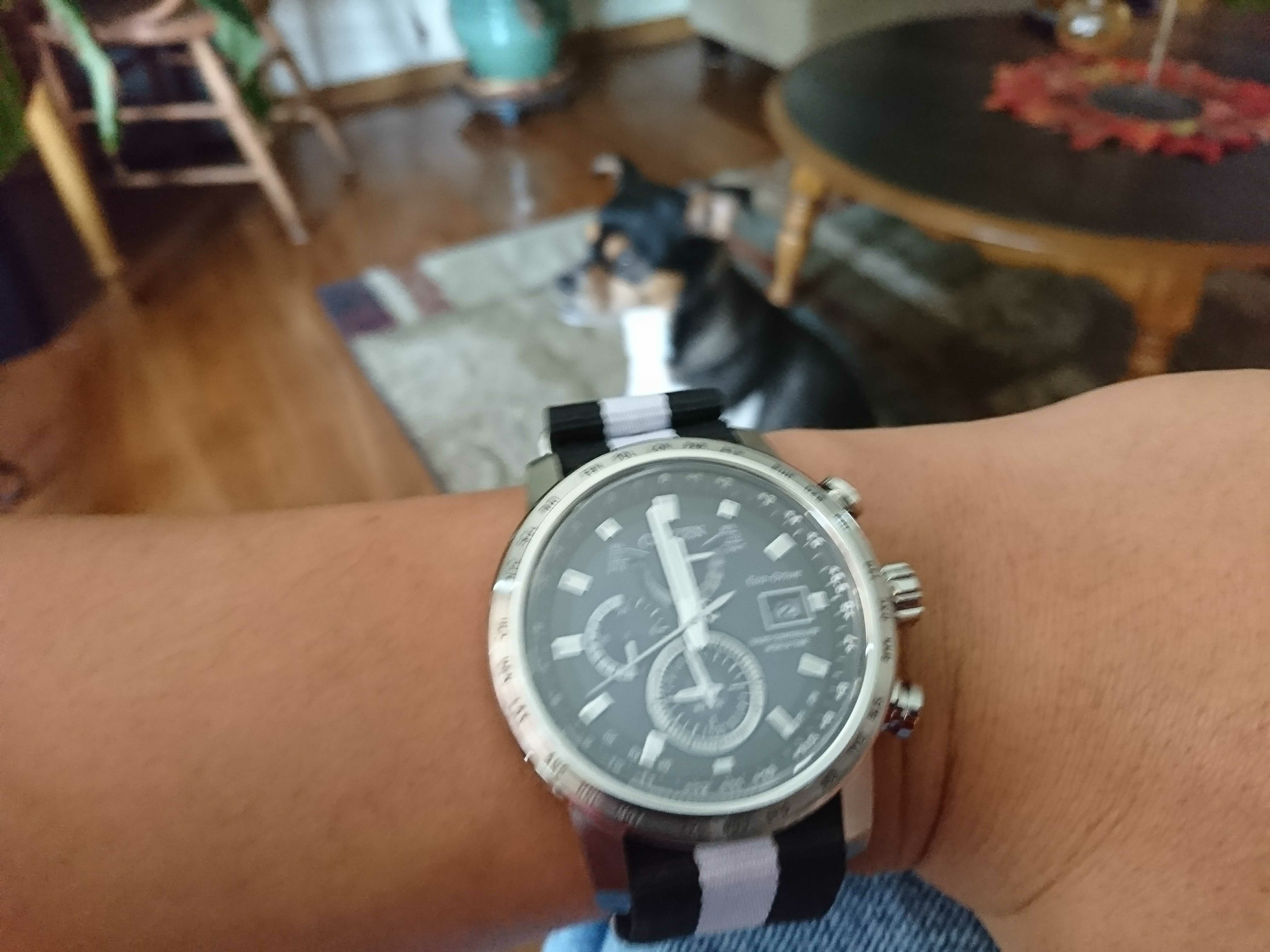 Watches at TJ Maxx - Page 8