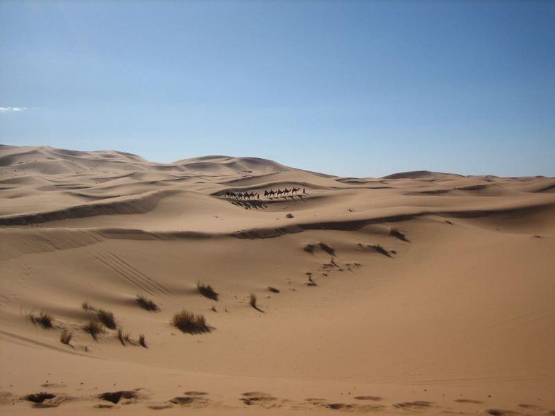 Fotos de nuestro viaje Off-Road a Marruecos en el 2008. B6adc0417f839ae040f228ef44929265