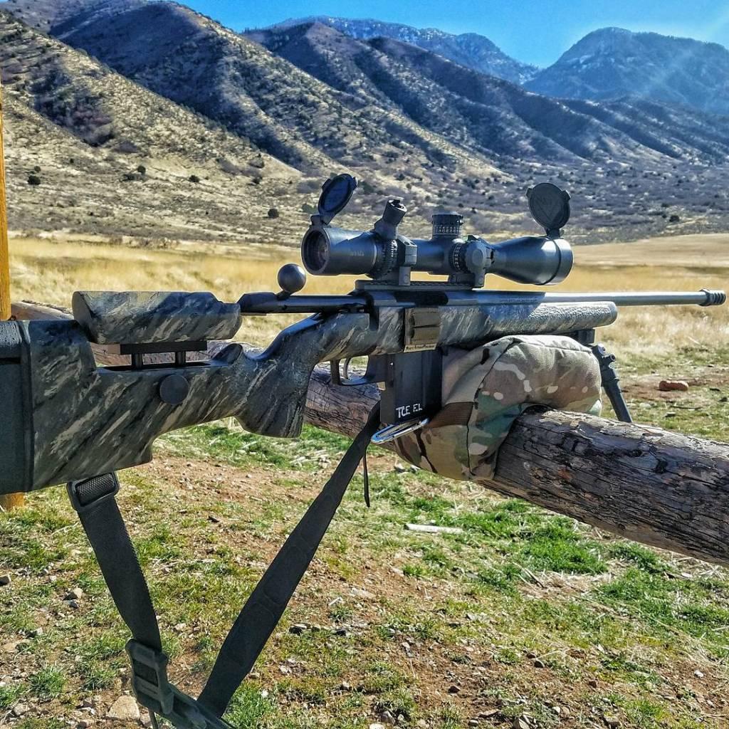 McMillan or B&C (Tikka T3x CTR) | Sniper's Hide Forum