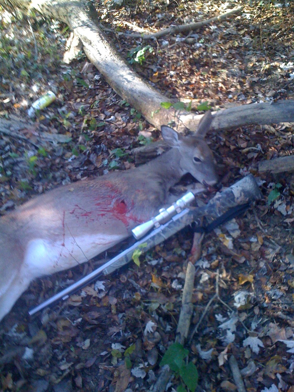 TNDEER com • View topic - 300 yard Sabot Shooter